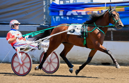 Lous Abigail (Casey Leonard) goes after her fourth consecutive victory in Thursday's Springfield championship for ICF trotting two-year-old fillies. (Four Footed Fotos)