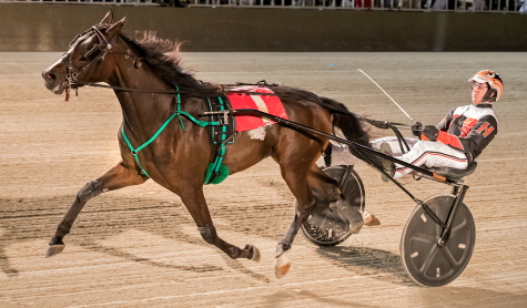 Louzotic (Kyle Husted), was one of three winning from the Steve Searle stable Friday afternoon at the Illinois State Fair meeting at Springfield. (Four Footed Fotos)