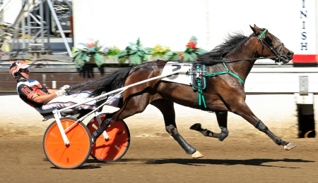 Louzotic (Kyle Husted) aims to return to the Springfield winner's circle after last week's winning ISFCS prep race for three-year-old Illinois bred filly trotters. (Four Footed Fotos)