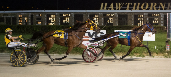 Pine Dream (Casey Leonard) is shown holding off Mandeville (Robert Smolin) in the Aug. 18 Open Trot. The Chupp Stable trotter goes after his third straight Open victory Sunday in Hawthorne's featured fifth race. (Four Footed Fotos)