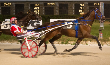 Pine Dream (Casey Leonard) looks to make it back-to-back victories Sunday in Hawthorne's Open Trot. (Four Footed Fotos)