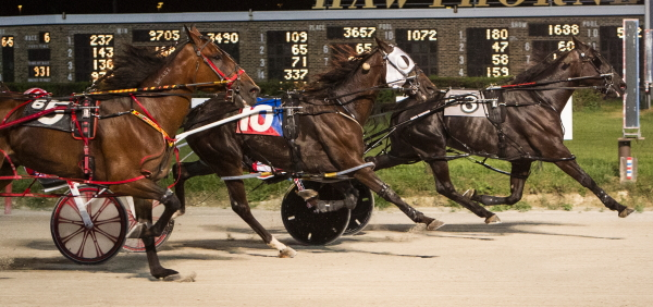 Stuckey Dote (No. 8), Fox Valley Gemini (No. 10) and Feelnlikearockstar (No. 5), the one-two-three finishers in last week's Open Pace will be back tonight to slug it out in Thursday's $12,000 feature race. (Four Footed Fotos)