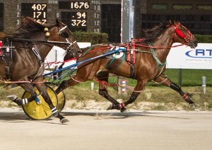The 6-year-old mare Sweetshadyshark from the Ronnie Roberts stable is shown winning last week's distaff Open with driver Ryan Anderson. (Four Footed Fotos)