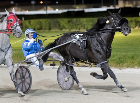 Unlocked (Jim Pantaleano), the 2018 Robert S. Molero ICF aged colt and gelding stake champions, is back in action tonight at Hawthorne. (Four Footed Fotos)