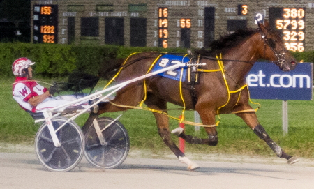 Whiskersonkittens (Todd Warren), the 2016 Plum Peachy champion is another possible Tony Maurello stakes bound mare racing Saturday night. (Four Footed Fotos)