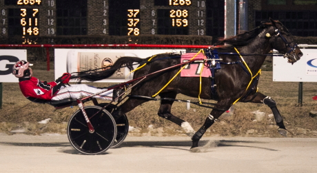 Castle Flight and driver Kyle Wilfong were all by themselves at the finish of last night's $12,000 Open Pace. (Four Footed Fotos)