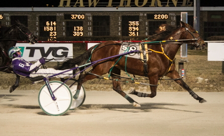 Brandon Bates is shown here driving the Jace Sundeen stable's Queens N Tens to her second straight victory at Hawthorne. (Four Footed Fotos)