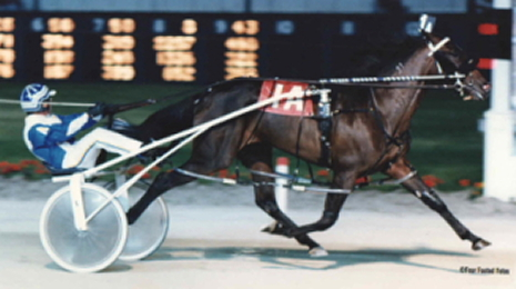 The Joe Anderson Stable's star filly Ohyouprettything) rewarded her connections in lucrative fashion on Super Night 1997. (Pete Luongo Photo)