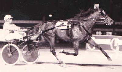 Future Illinois Hall of Fame trotter Plesac (Jim Curran) showed his heels to the opposition on Super Night 2000 at Balmoral Park. (R.E.B. Photo