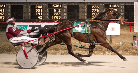 Last week's filly and Mare Open Pace winner Rollin Coal (Juan Franco) seeks her third consecutive win in tonight's second race $12,000 distaff Open. (Four Footed Fotos)
