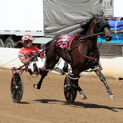 Sleazy Gal (Kyle Wilfong) was an impressive winner as a two-year-old last summer at the Springfield State Fair. (Four Footed Fotos)