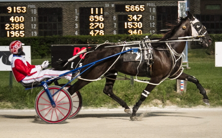 Shady Maple Valor (Freddie Patton Jr) looks to follow-up his win in a division of the Cardinal trot with another in a division of tonight's Kadabra stake series for two-year-old trotting colts and geldings. (Four Foot Fotos)