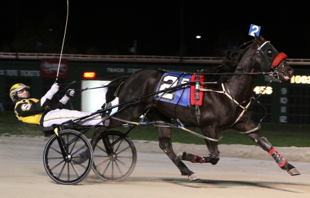Two-time Balmoral Park Super Night champion Al's Hammered (Bobby Smolin) returns to Illinois tonight at the age of eleven. (REB Photo)