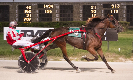 The two-year-old trotter Bobalou, driven by his trainer Curt Grummel, made it four consecutive wins on Friday evening. (Four Footed Fotos)