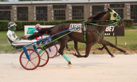 Recent Hawthorne winner Frontier Manard (Freddie Patton Jr.) captured last Tuesday's Downstate Classic at Springfield for aged state-bred male trotters. (Four Footed Fotos)