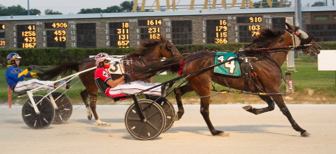 The Rick Schrock trained three-year-old filly pacer Harper was one of six winning drives for Kyle Wilfong Saturday night. (Four Footed Fotos)