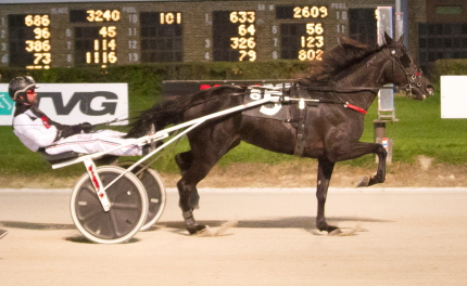 Marcus Miller drove the Mike Rogers trained filly El Oh Governor to a victory in the Beulah Dygert Memorial championship for three-year-old trotting fillies. (Four Footed Fotos)